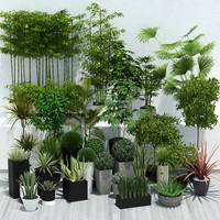 plants collesion vol_1