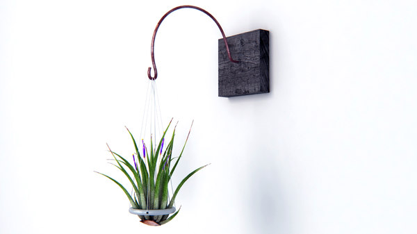 3d model creative air plant wall