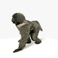 3d c4d walking baboon animations