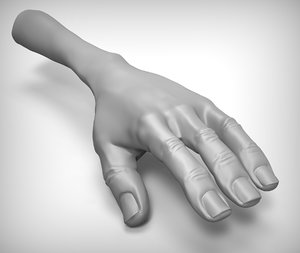 3d cartoon hand model