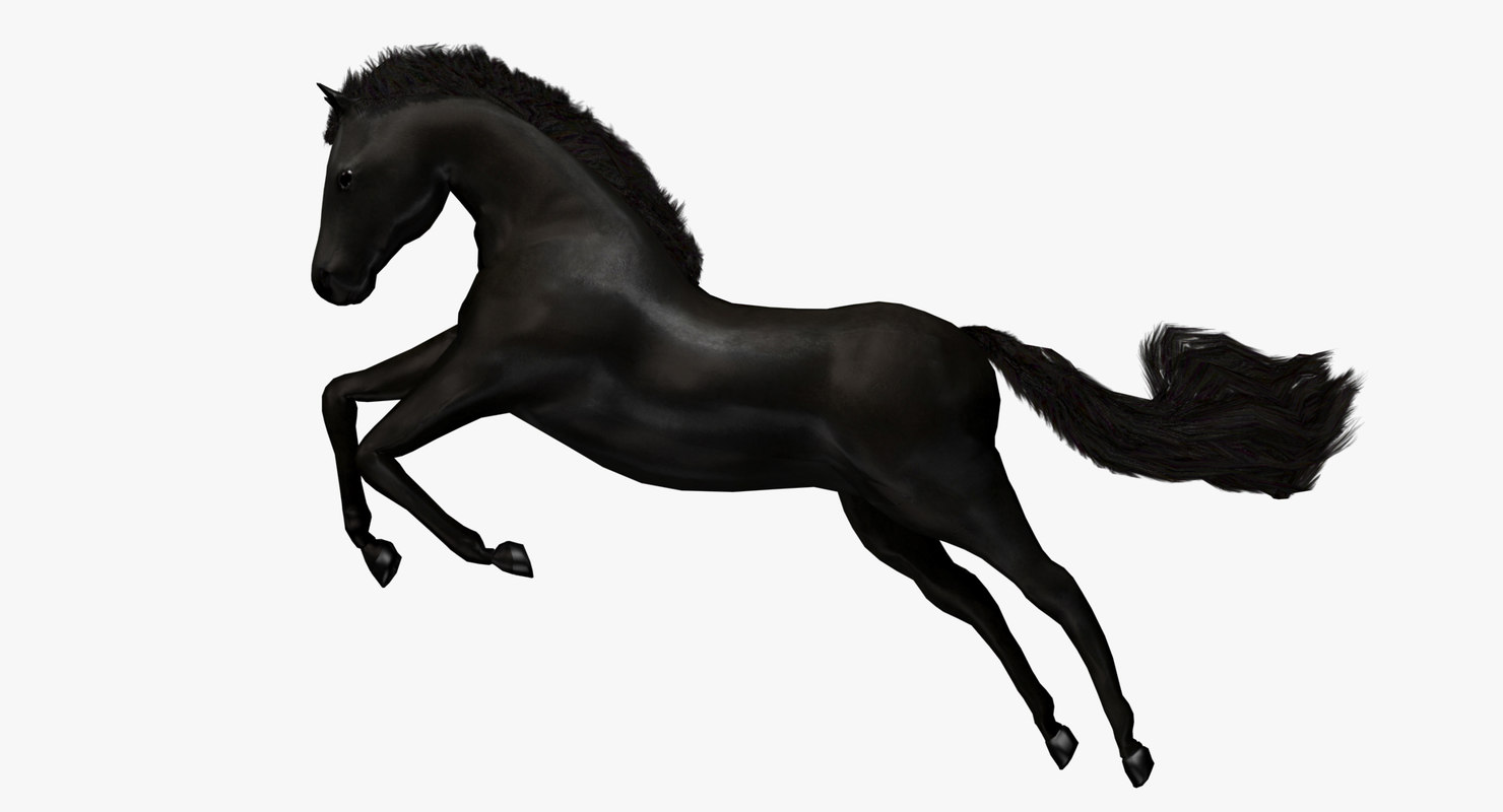 horse black animation 3d max