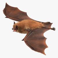 x bat fur hair