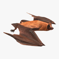 Flying Bat 2 3D Model