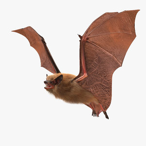flying bat fur hair 3d max