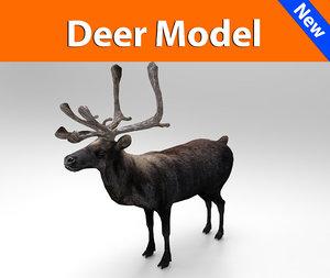 3d deer ready model