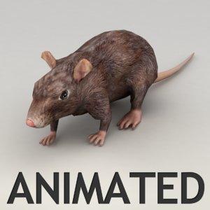 rat walk animation 3d model