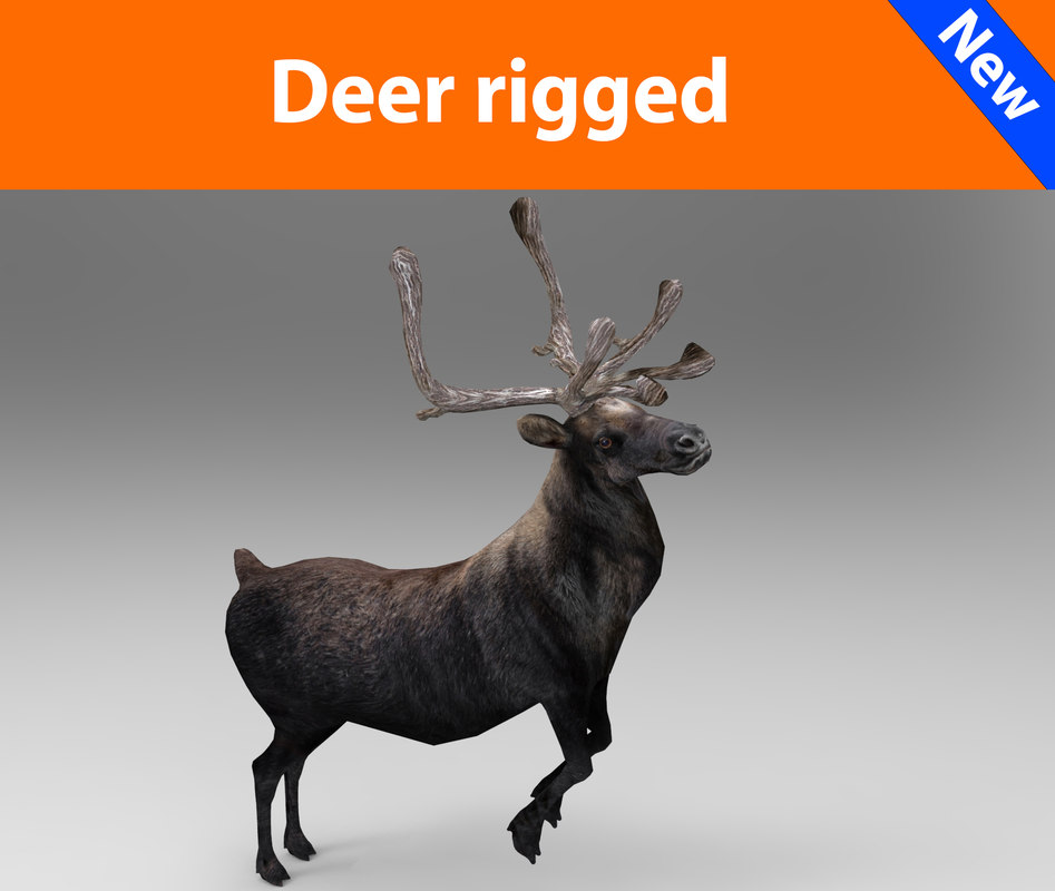 deer rigged 3ds