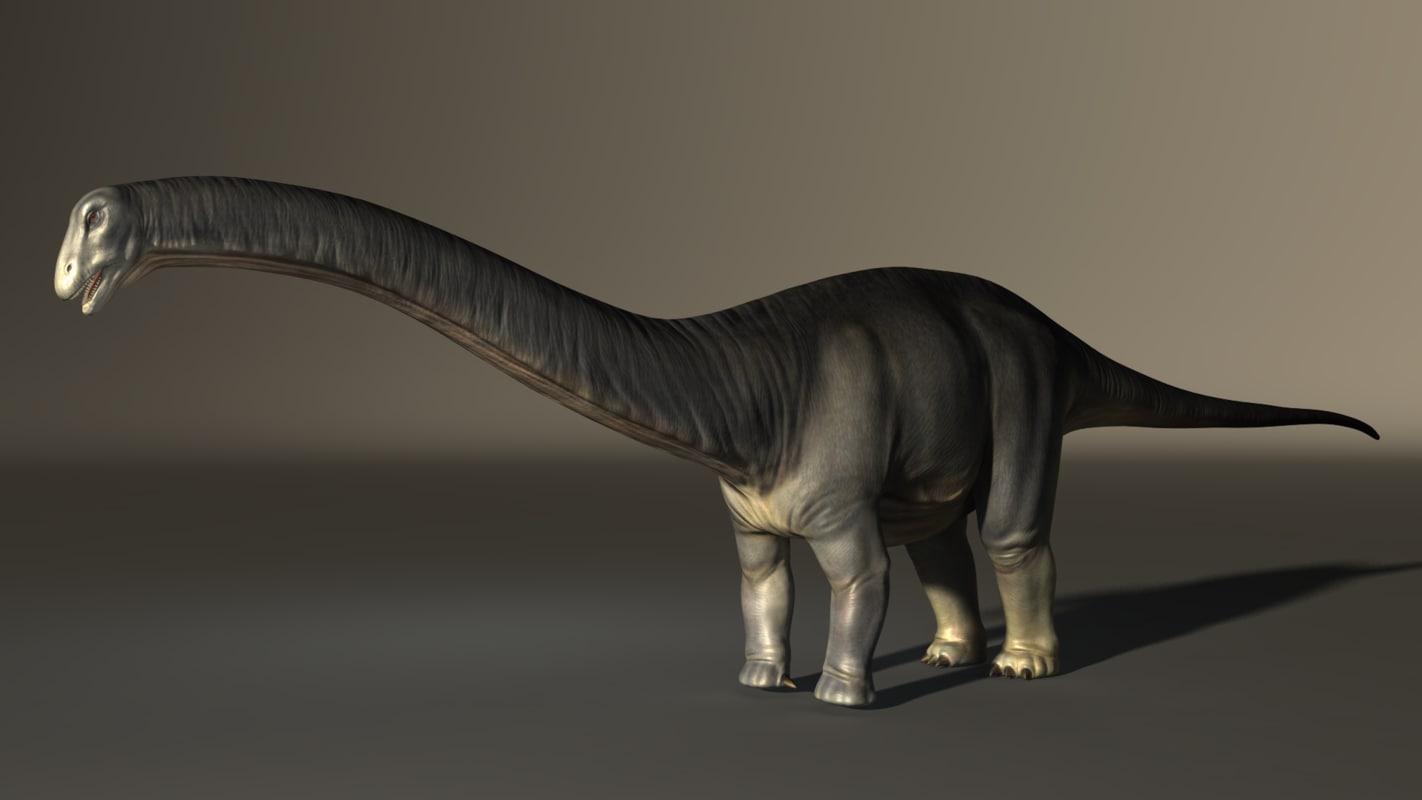 3d apatosaurus model