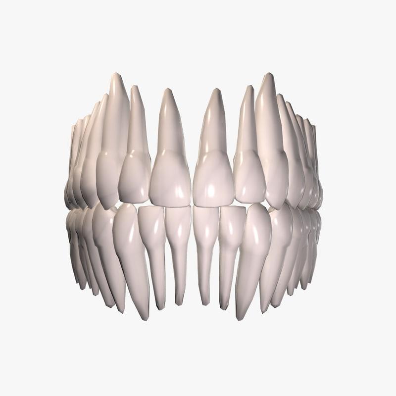 3d model teeth