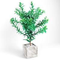 plant tree 03 max