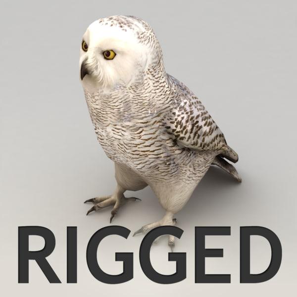 max rigged snow owl