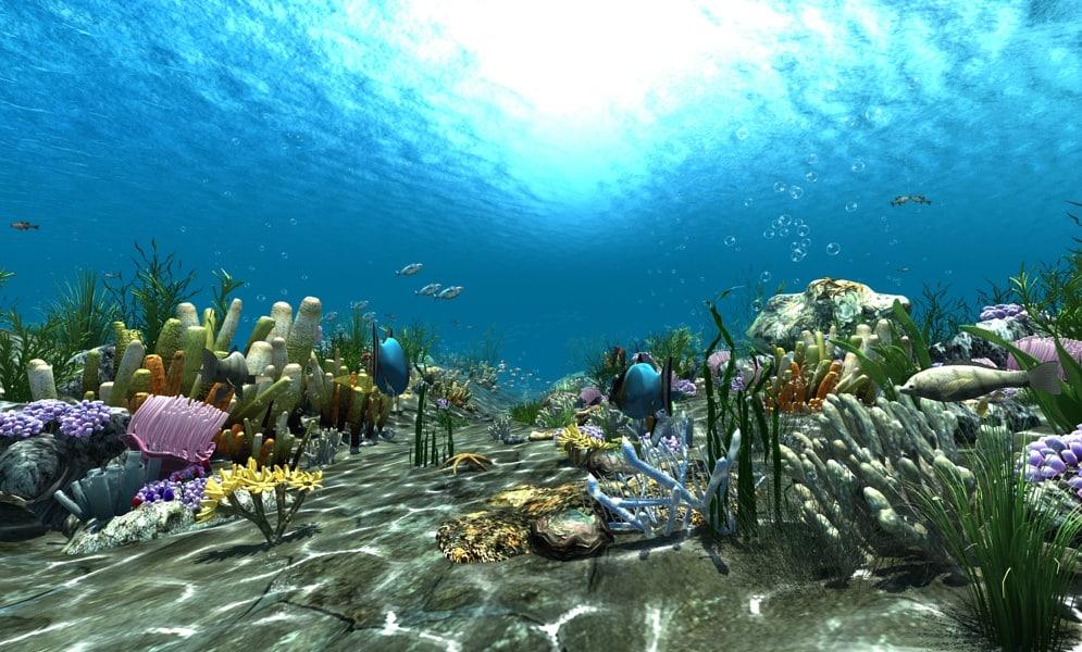 underwater world animation 3d model