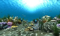 underwater world animation 3d model