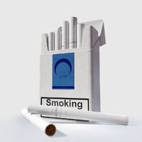pack cigarettes 3d max
