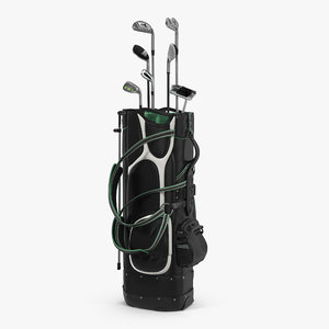 golf bag clubs 3d model