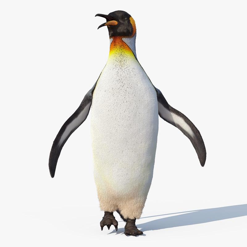3d king penguin fur rigged model