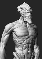 3d protos body