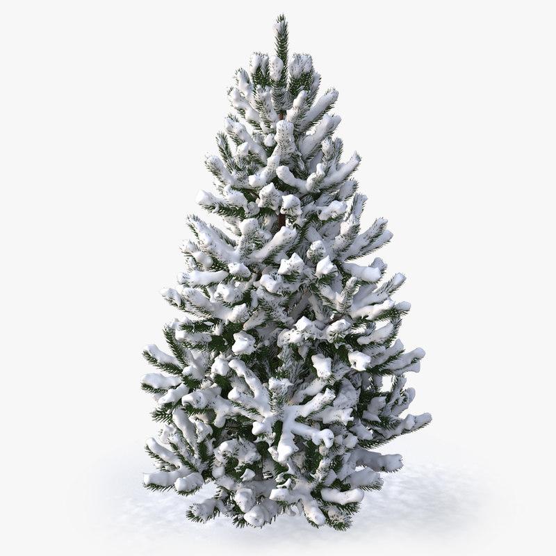 3d model of snowy pine tree