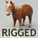 Pony 3D models