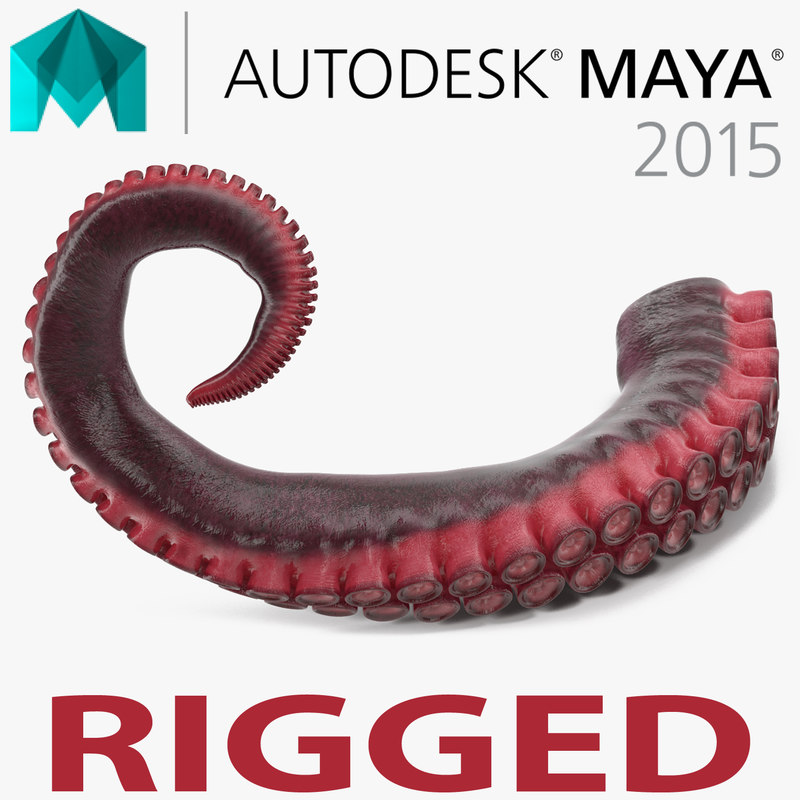 Octopus Tentacle Rigged for Maya
