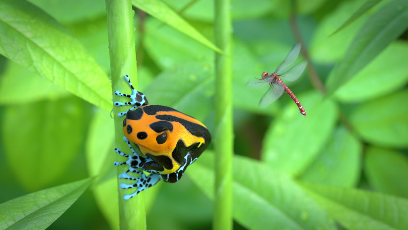 poisonous dart frog 3d 3ds