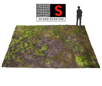 3d forest ground 16k hd