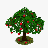3d tree apple model