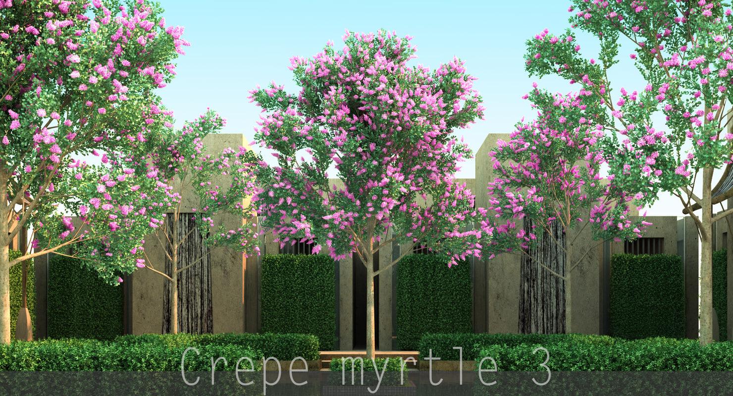 max 3 4 tree flowers