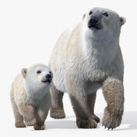 Polar Bear Group(FUR)(RIGGED)