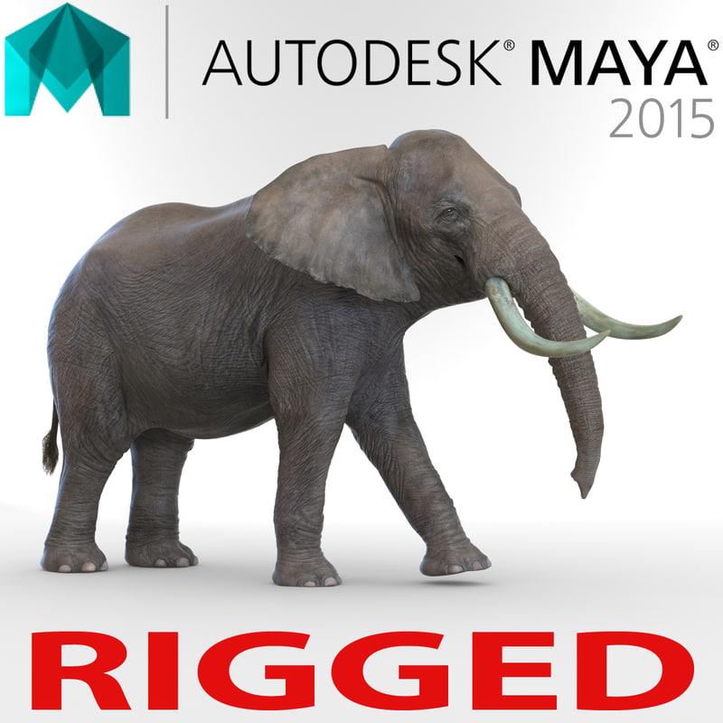 3d elephant rigged model