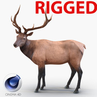 elk rigged animate 3d model