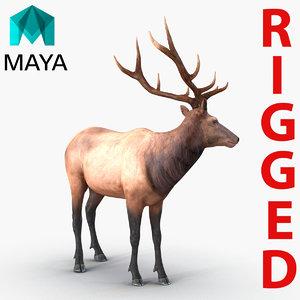 3d elk rigged