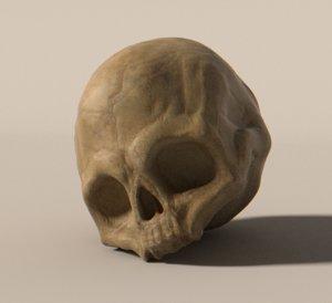 3d humanoid skull model