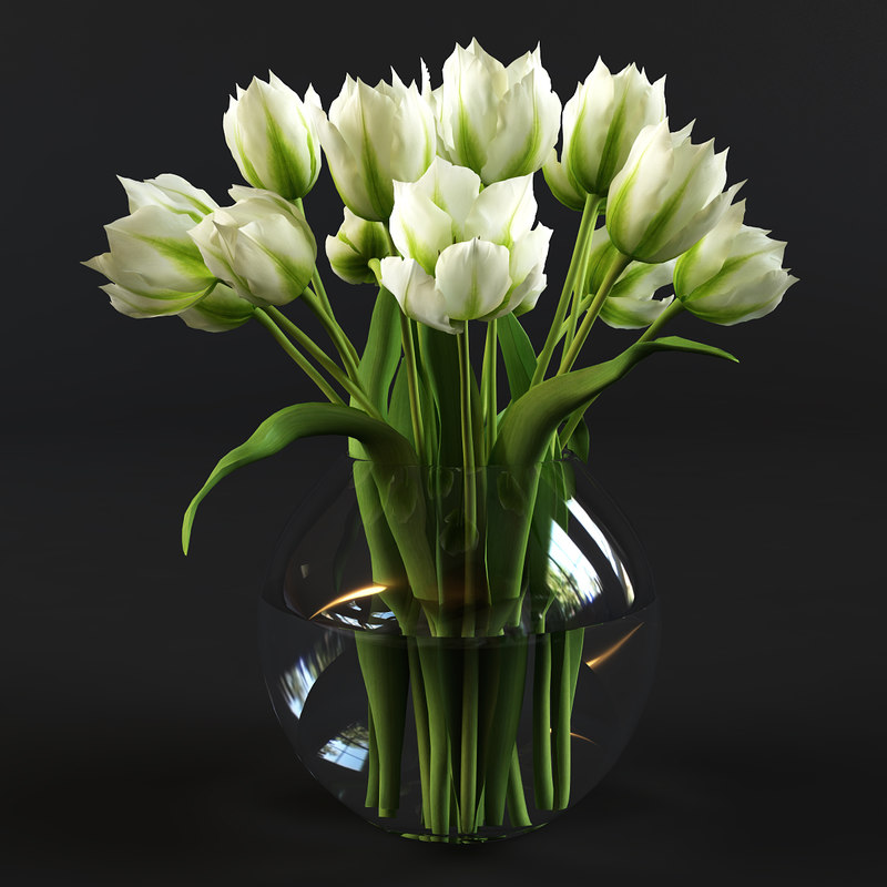 green tulips 3d max