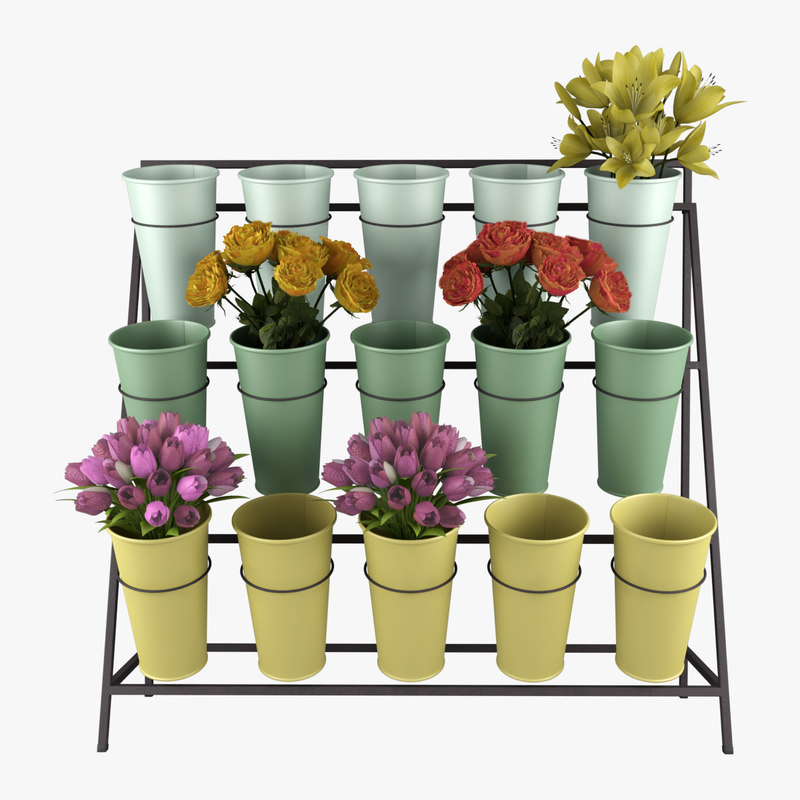 stand flower display 3d max