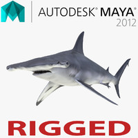 Great Hammerhead Shark Rigged for Maya