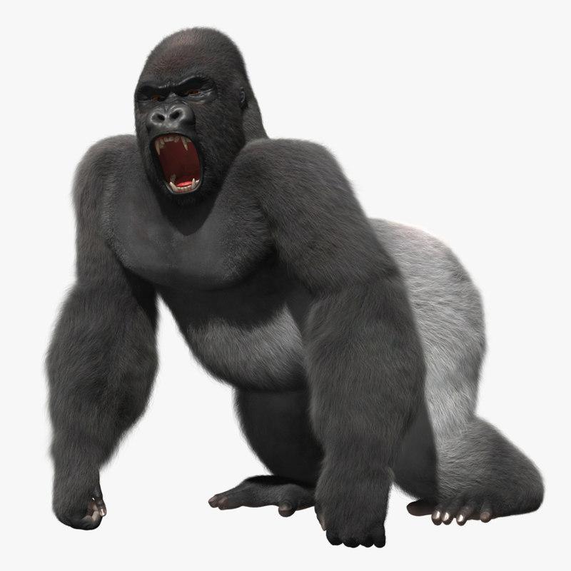 3d model gorilla shave haircut