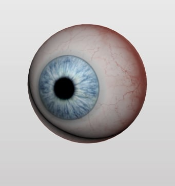 3d eyeball human eye model