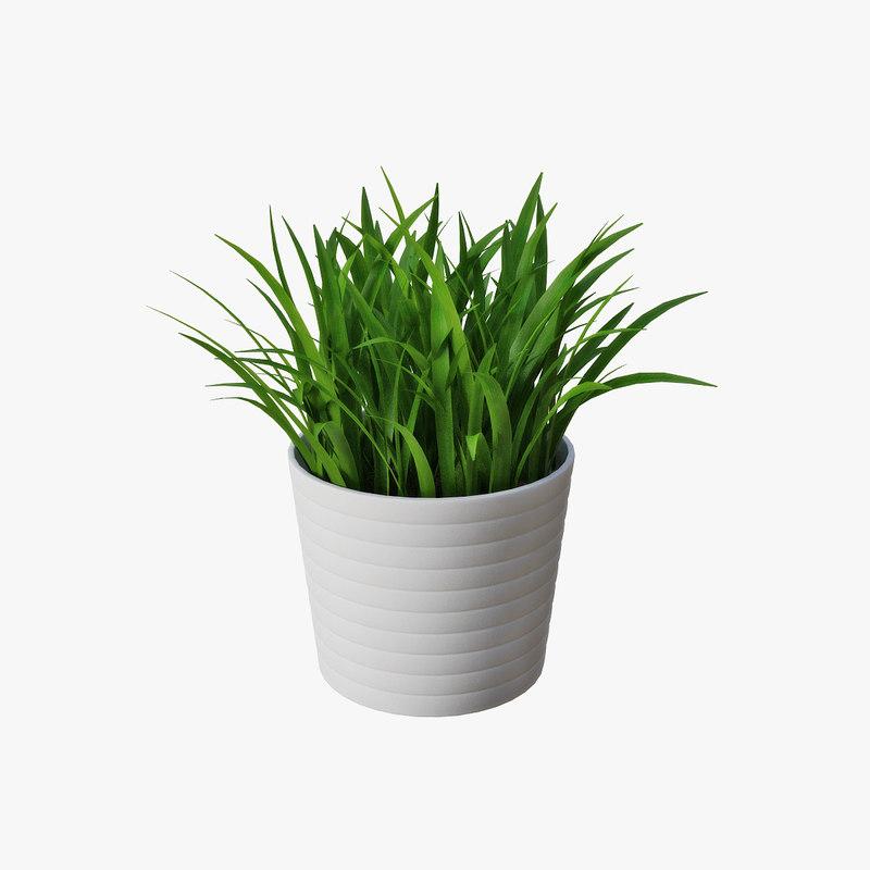 3d grass pot