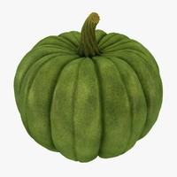 3d model pumpkin green