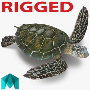 sea turtle rigged 3d model