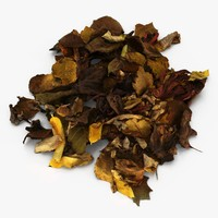 pile autumn leaves 3d model