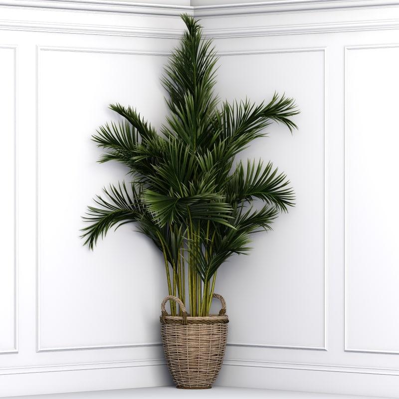 plants office 3d model