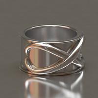 3d time ring model