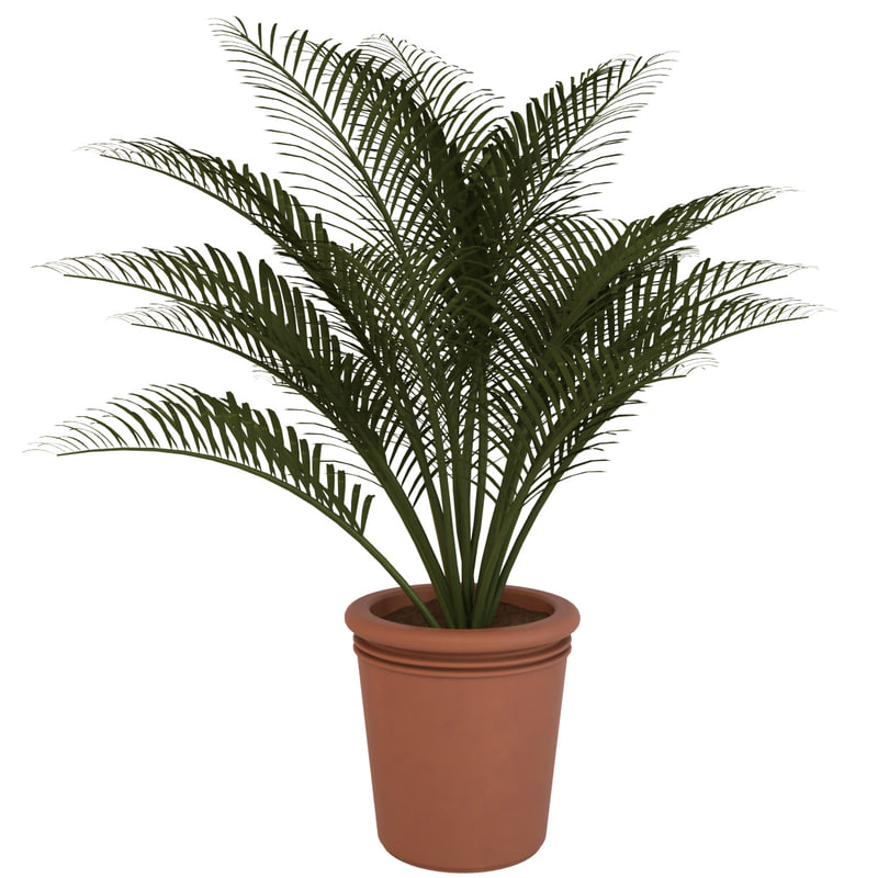3d decorative pot plant