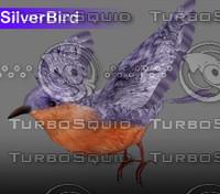 Siler Bird