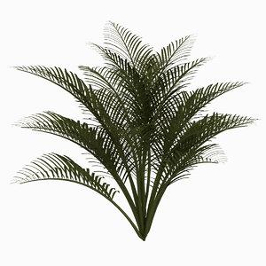 3d max ground palms