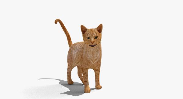 rigged domestic cat 3d model