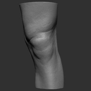 knee realistic 3d obj