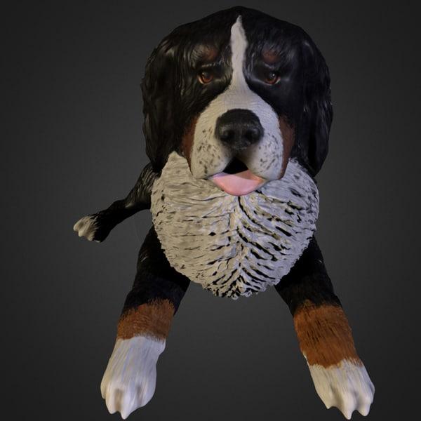 bernese mountain dog 3ds
